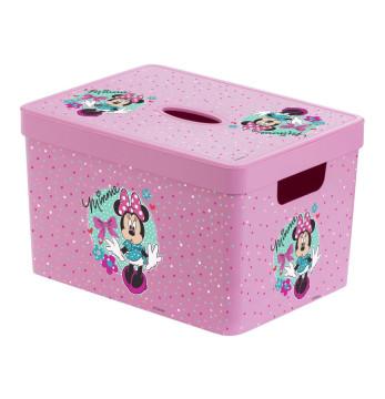 20 lt Decorated Box - Minnie